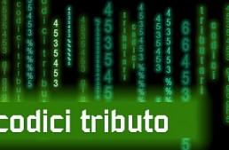 Al via regolarizzazione CTD: l'Agenzia delle entrate prepara il codice tributo '5381'