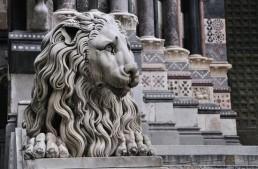 Genova. L'ex. assessore Fiorini critica l'azione della Regione sul gioco d'azzardo