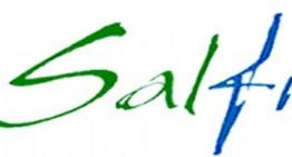 """Callipo (Salfi): """"L'attuazione della delega fiscale: un esempio di fuoco amico"""""""
