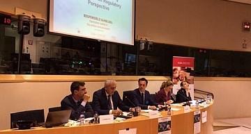 """In Parlamento europeo si parla di Responsible Gambling. Caputo(S&D) a PressGiochi: """"Servono ricerche approfondite sul problema del gioco patologico; informazione e prevenzione sono gli obiettivi dell'Ue"""""""