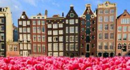 Olanda. La Corte Distrettuale ha approvato le multe del KSA contro gli operatori dell'iGaming non autorizzati